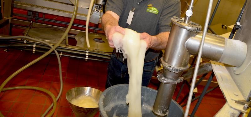 Food production of pre-gelatinized starch at 100% hydration with Rapidojet.