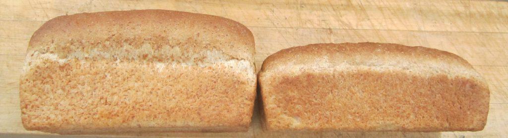 whole wheat bread bran comparison